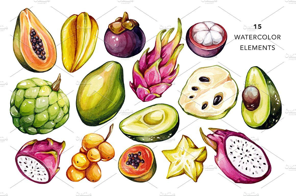 Tropical fruits watercolor by olga olmix on creativemarket