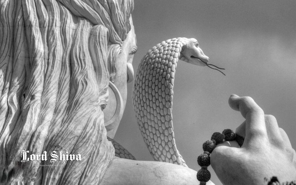 Free Download Lord Shiva Live Wallpaper In 2019 Shiva