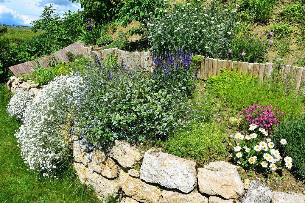Was Wachst Im Garten Immer Mehr Garten Bilder Natur
