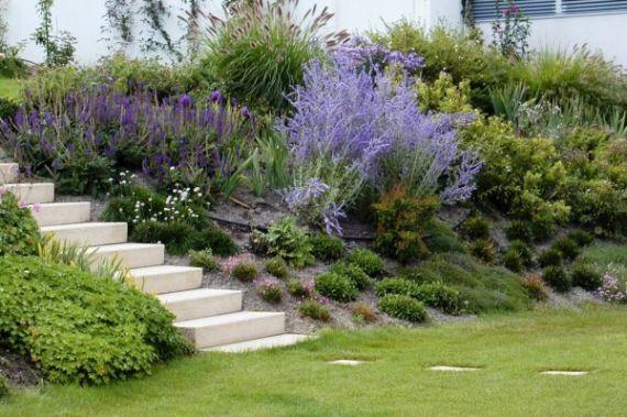 Hanggestaltung Garten Bepflanzung Garten Bepflanzen