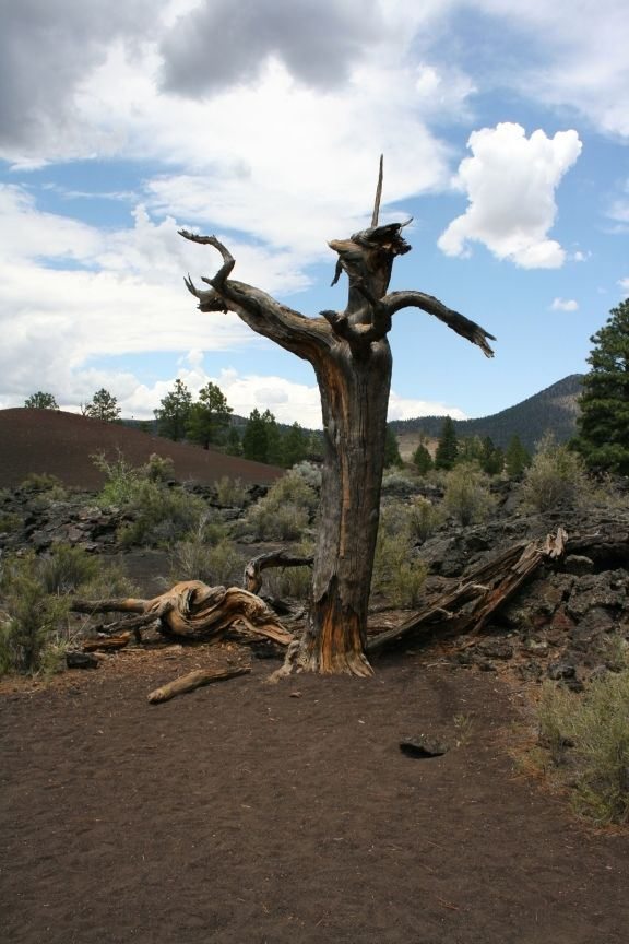 Sunset Crater Park Near Flagstaff Az New Mexico Colorado Arizona