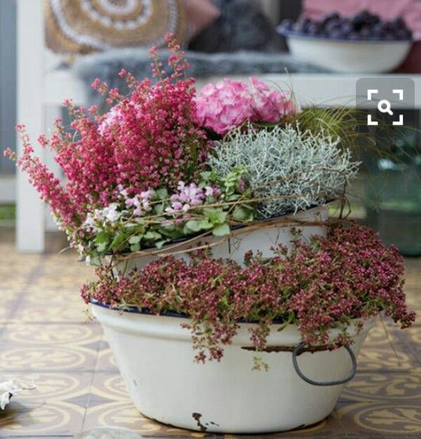 Pin By Es On Garten Container Flowers Fall Container Gardens Fall Planters