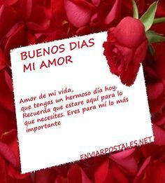 Enviarpostales Mi Novia 3 Png 480 532 Buenos Dias Amor Frases