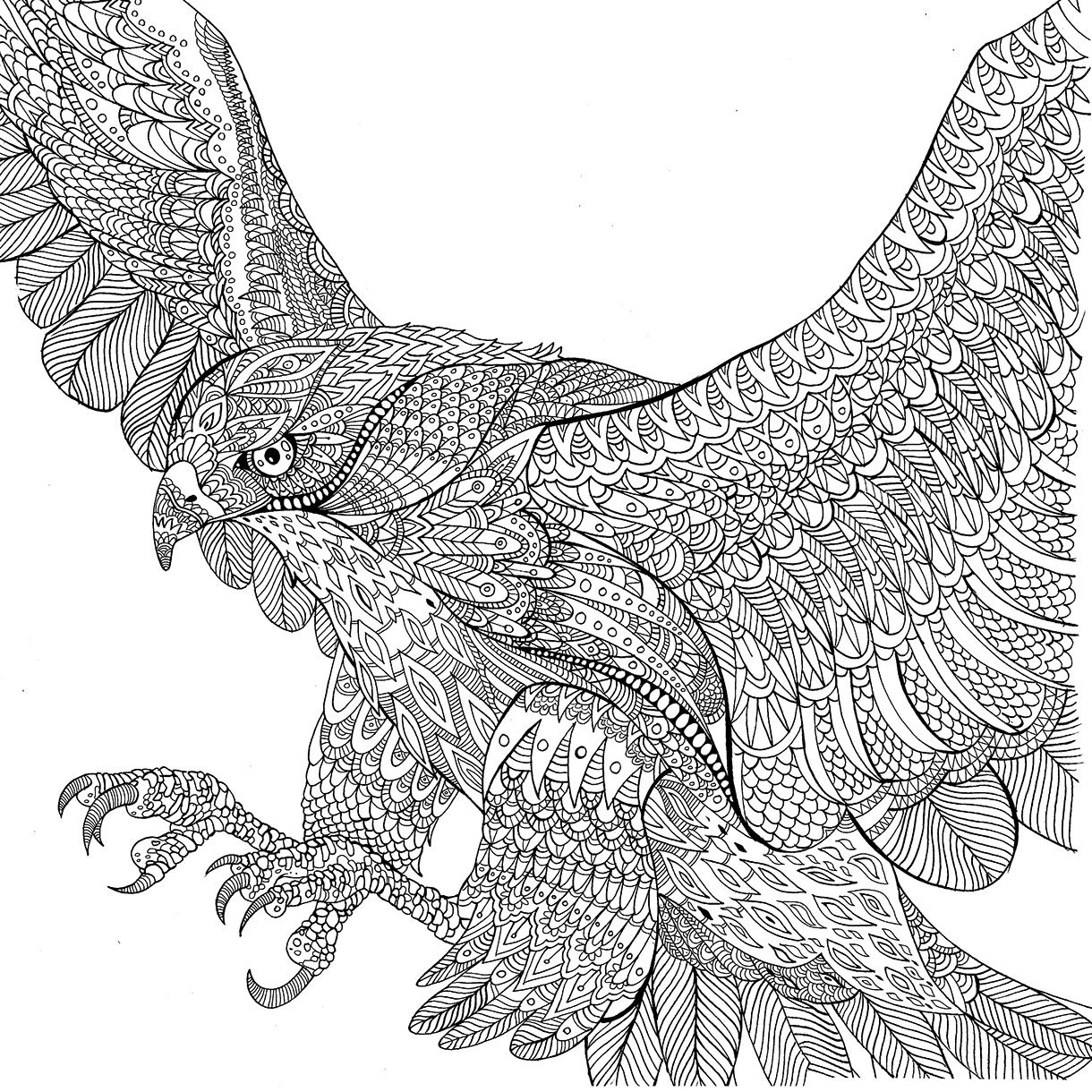 image result for the menagerie colouring book | millie