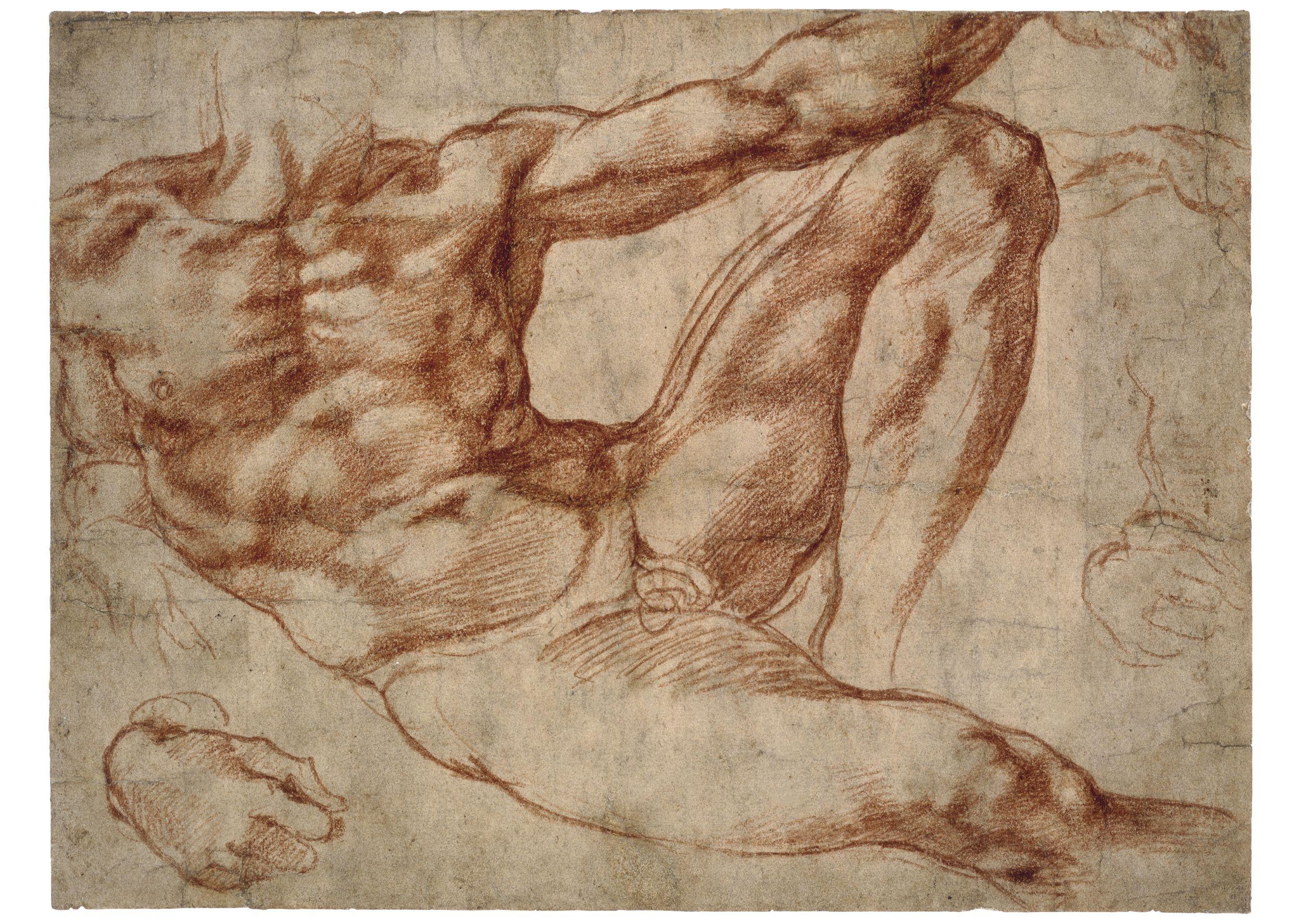 Michelangelo Drawings, Michelangelo Sketches | Michelangelo Gallery