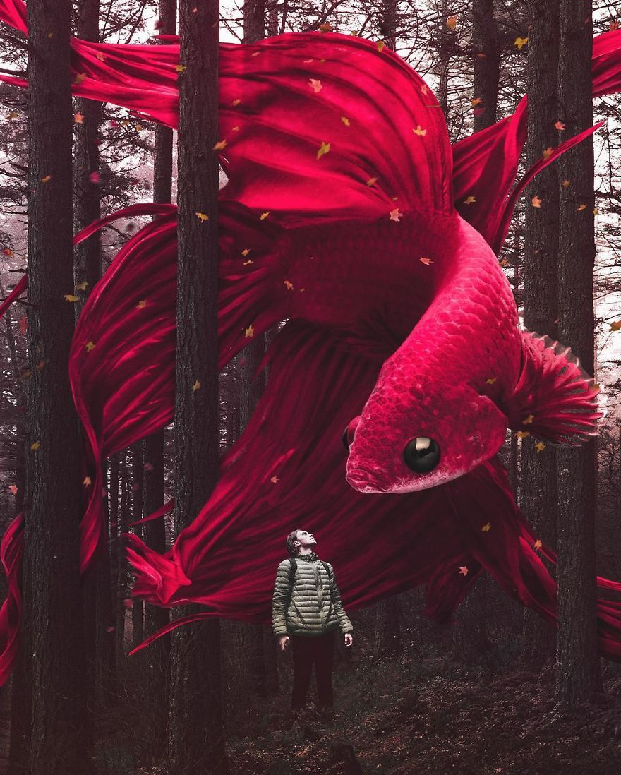 37 Surreal Photo Manipulations By Zulkarnain Ismail That Challenge Logic