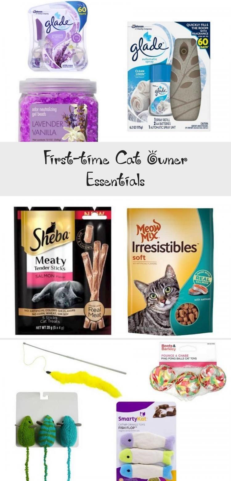 Firsttime cat owner essentials cats in 2020 cat