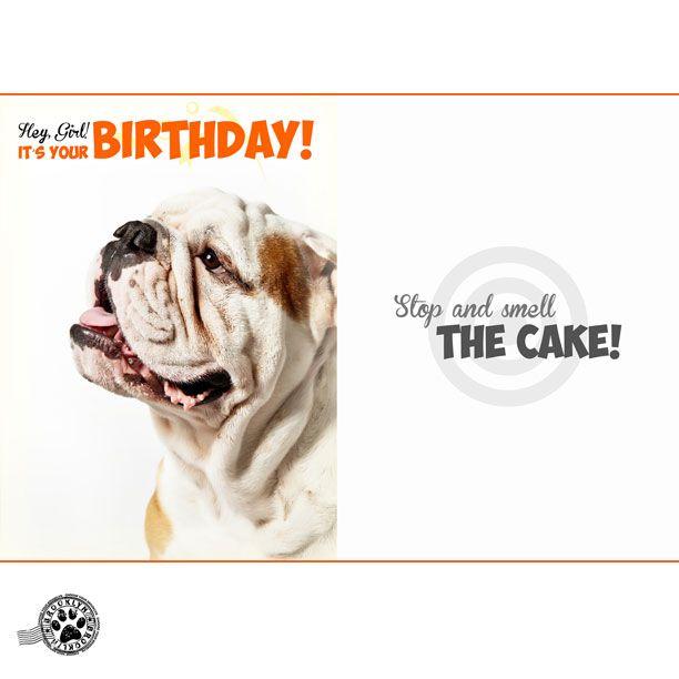 Its Your Birthday Brooklyn Brooklynmood Ecards Birthdaygirl Birthdaywishes Wishes Greetings Birthdaygreetings
