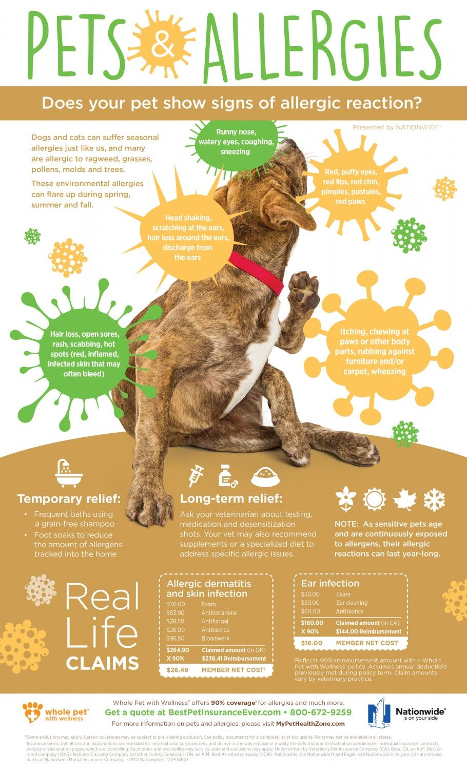 Be Careful What Products You Use With Your Pets Too Pet Allergies Dog Runny Nose Allergies