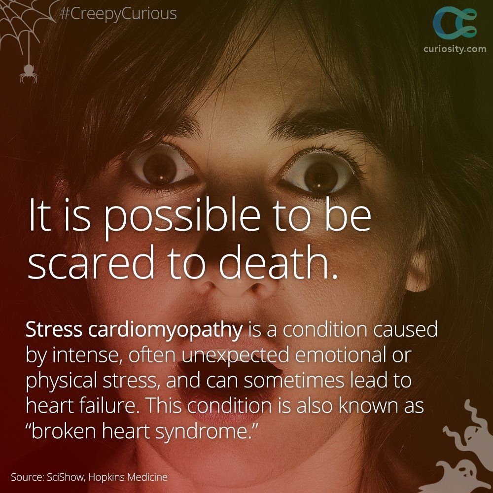 Pin By Curiosity On Lifestyle Broken Heart Syndrome Physical