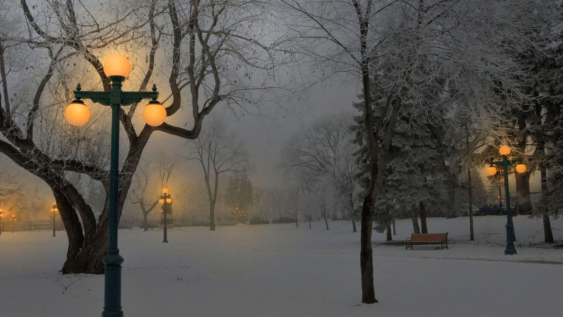 Foggy Winter Night In A Park Hd Desktop Background Wallpaper Free