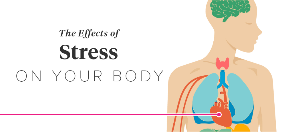 The Effects of Stress on Your Body Effects of stress