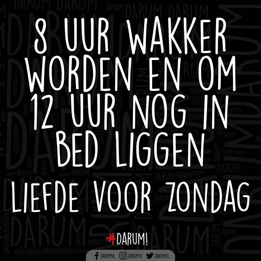 "14.9k Likes, 281 Comments - #DARUM!  (@darumnl) on Instagram: ""Goedemorgen #darum #zondag"""