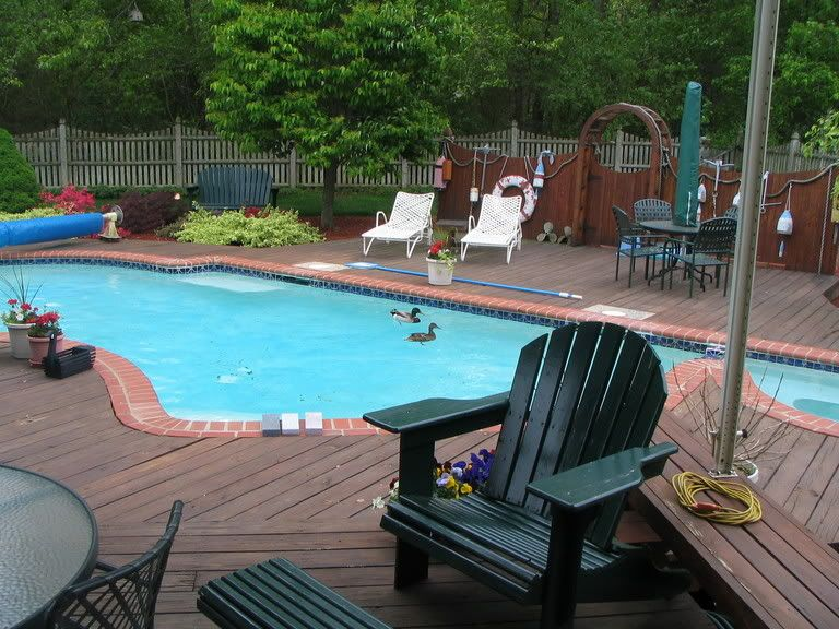 Brick coping idea for wooden pool deck wood pool deck