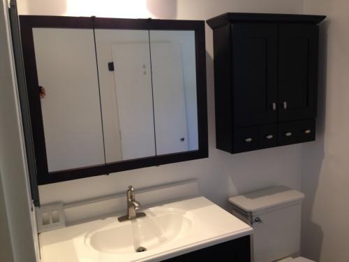 34+ Bathroom mirror cabinet espresso type