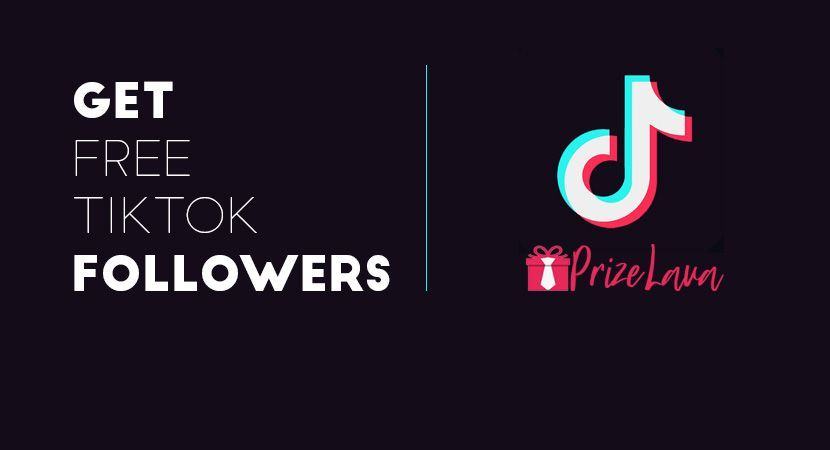 Tiktok Followers Hack Free Followers Free Followers On Instagram How To Get Followers