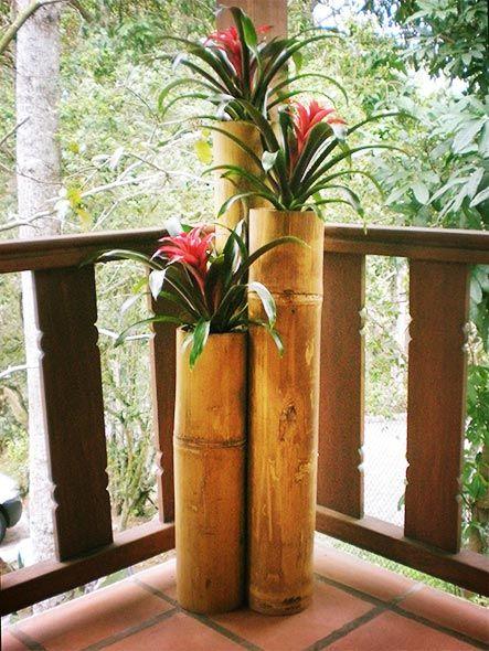 Vasos para plantas daisy Pinterest Vasos, Plantas y Bambú - decoracion con bambu