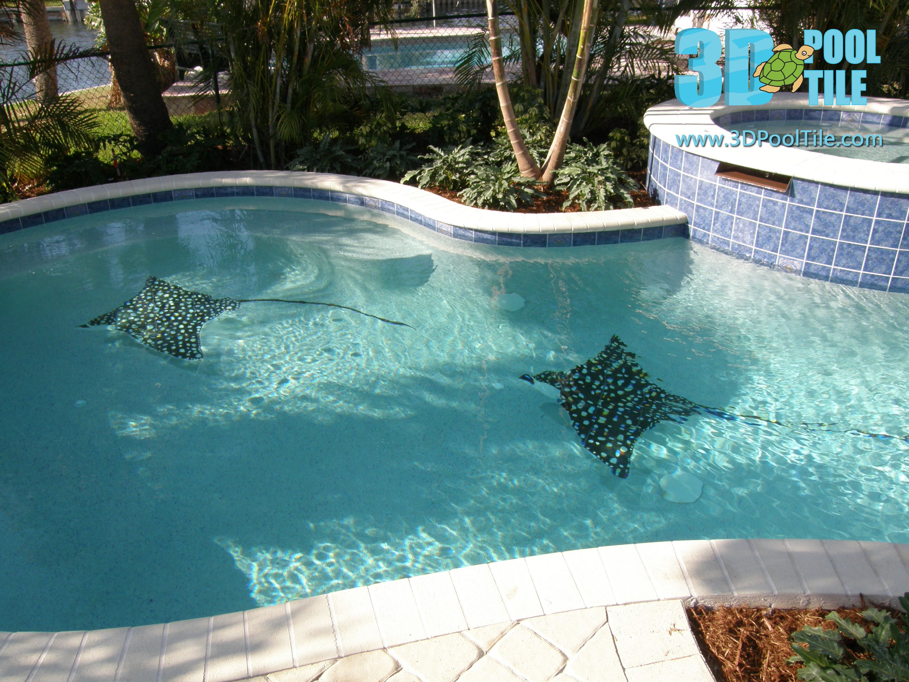 3d Pool Tile Spotted Rays Swimming Pool Tiles Diy Swimming Pool Swimming Pool Construction