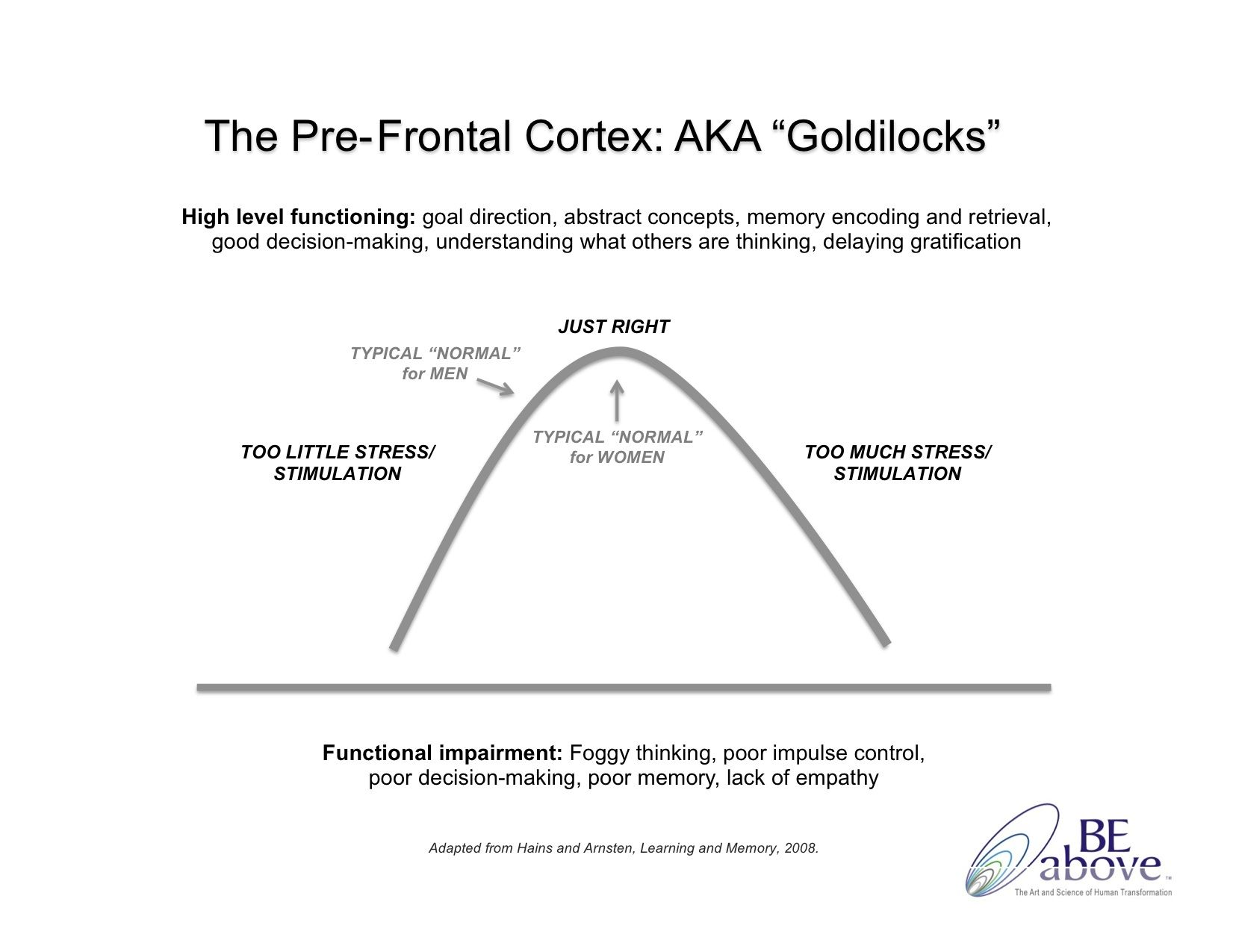 Ann Betz Goldilocks Bell Curve For Pre Frontal Cortex
