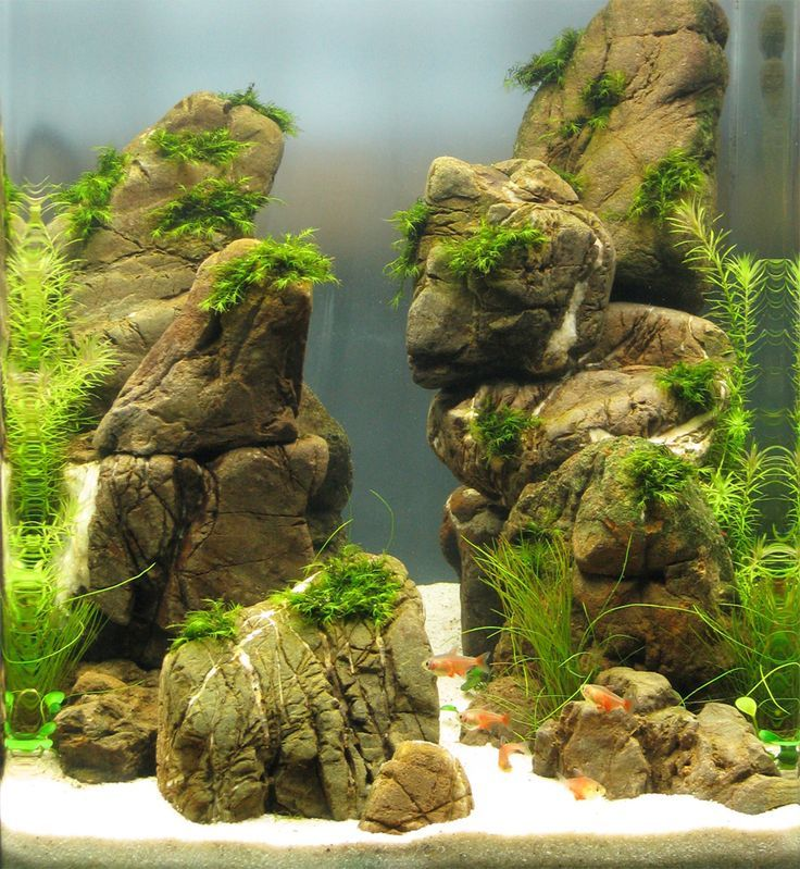 Stones Tropical Decoration 3Kg Ornament Fish Tank Black Decorative Rock Aquarium Natural Cloud