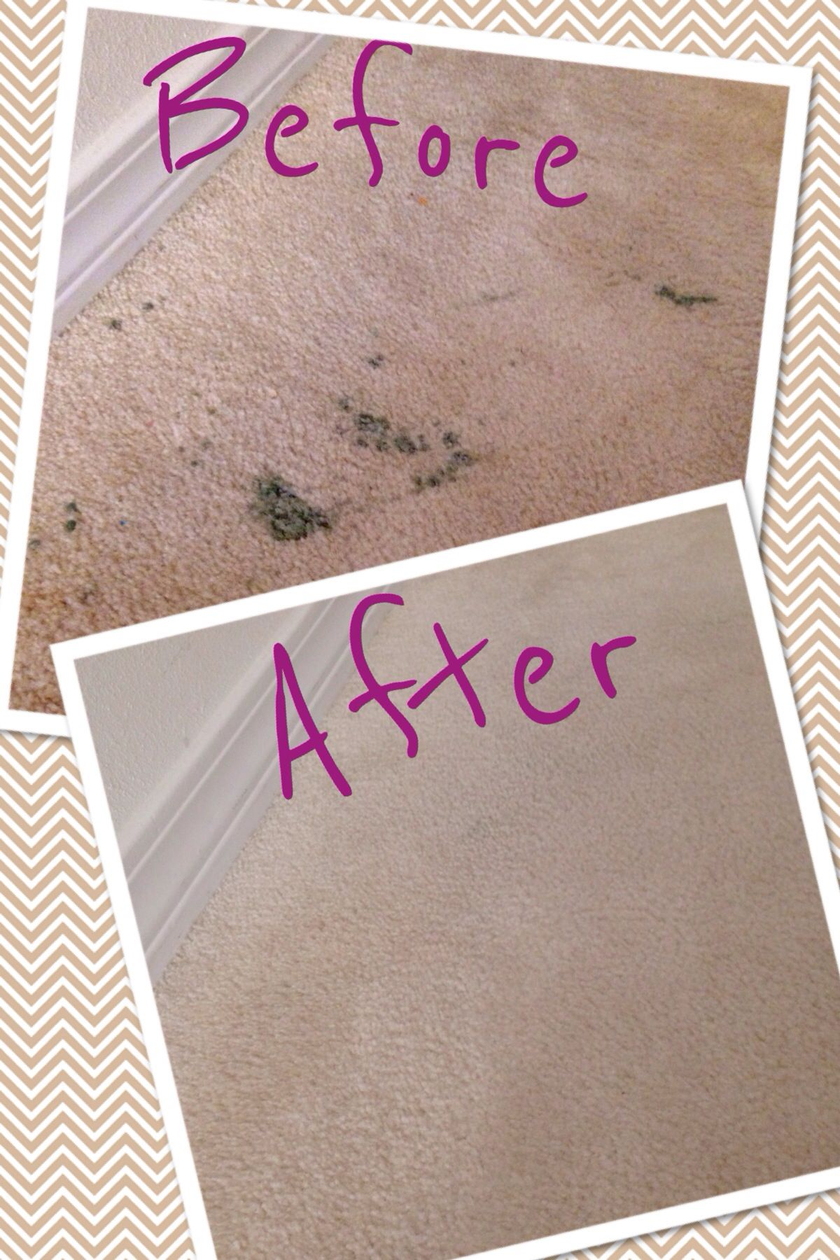 Getting Scentsy Wax Out Of Your Carpet Take A Hair Blow