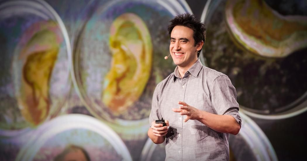 Andrew Pelling: This scientist makes ears out of apples | TED Talk | TED.com
