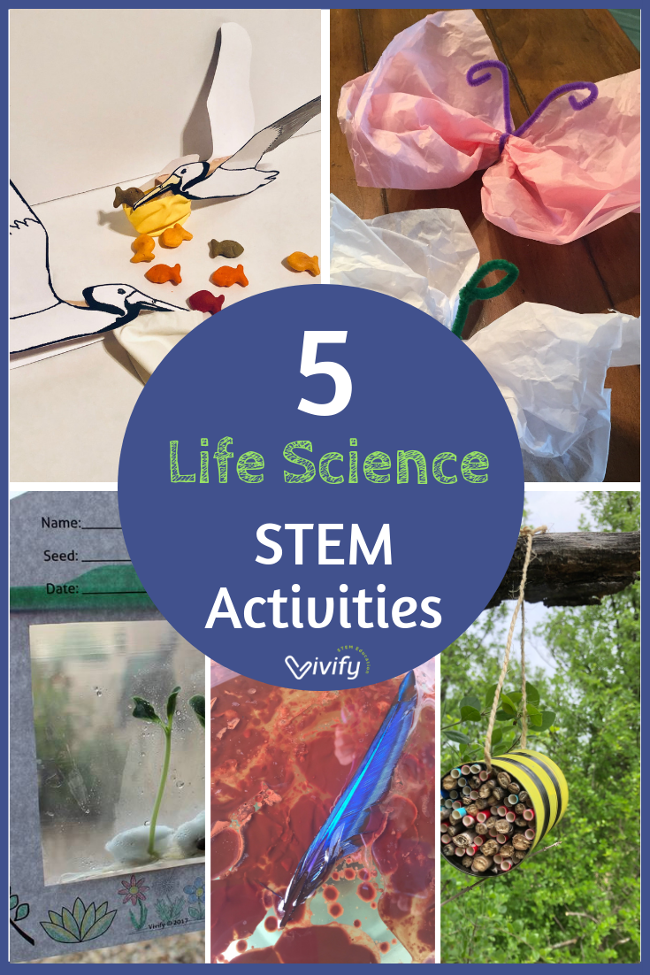 5 Life Science STEM Activities for Elementary #stemactivitieselementary