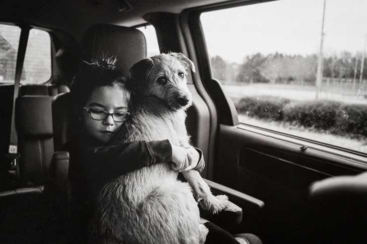 """5. ¡Son tiernos! De acuerdo con la pequeña niña de seis años de la foto (mi hija), """"los perros rescatados son confortables y hacen cosas tontas"""". Por supuesto, hacer cosas tontas, significa comerse tus gafas."""