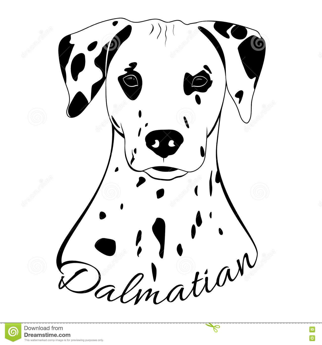 Dalmatian Dog Head Download From Over 64 Million High Quality Stock Photos Images Vectors Sign Up For Fre Dalmatian Dogs Dog Illustration Outline Drawings