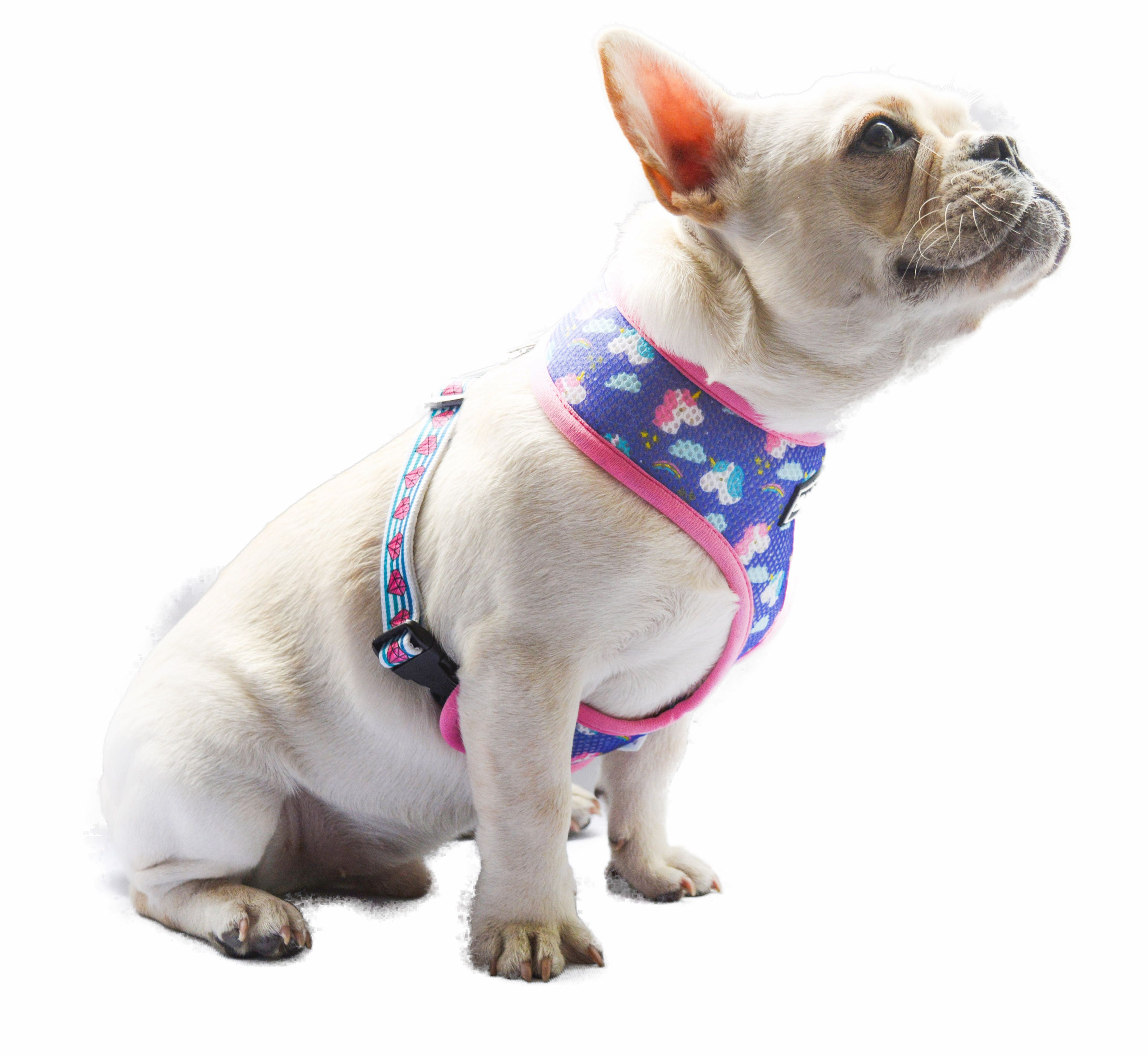 shop at Reversible Dog harness ,