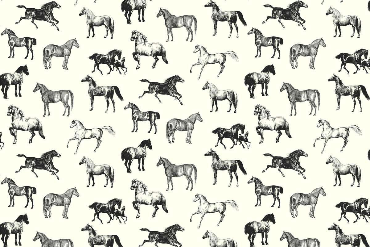 Fantastic Wallpaper Horse Pattern - 794cd7c6ffb2c05259d8d2eeeb04f4f5  Best Photo Reference_206632.jpg