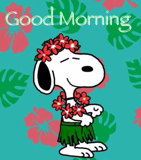 Good Morning Snoopy In Leis And A Hula Skirt Snoopy Love Good Morning Snoopy Snoopy Images
