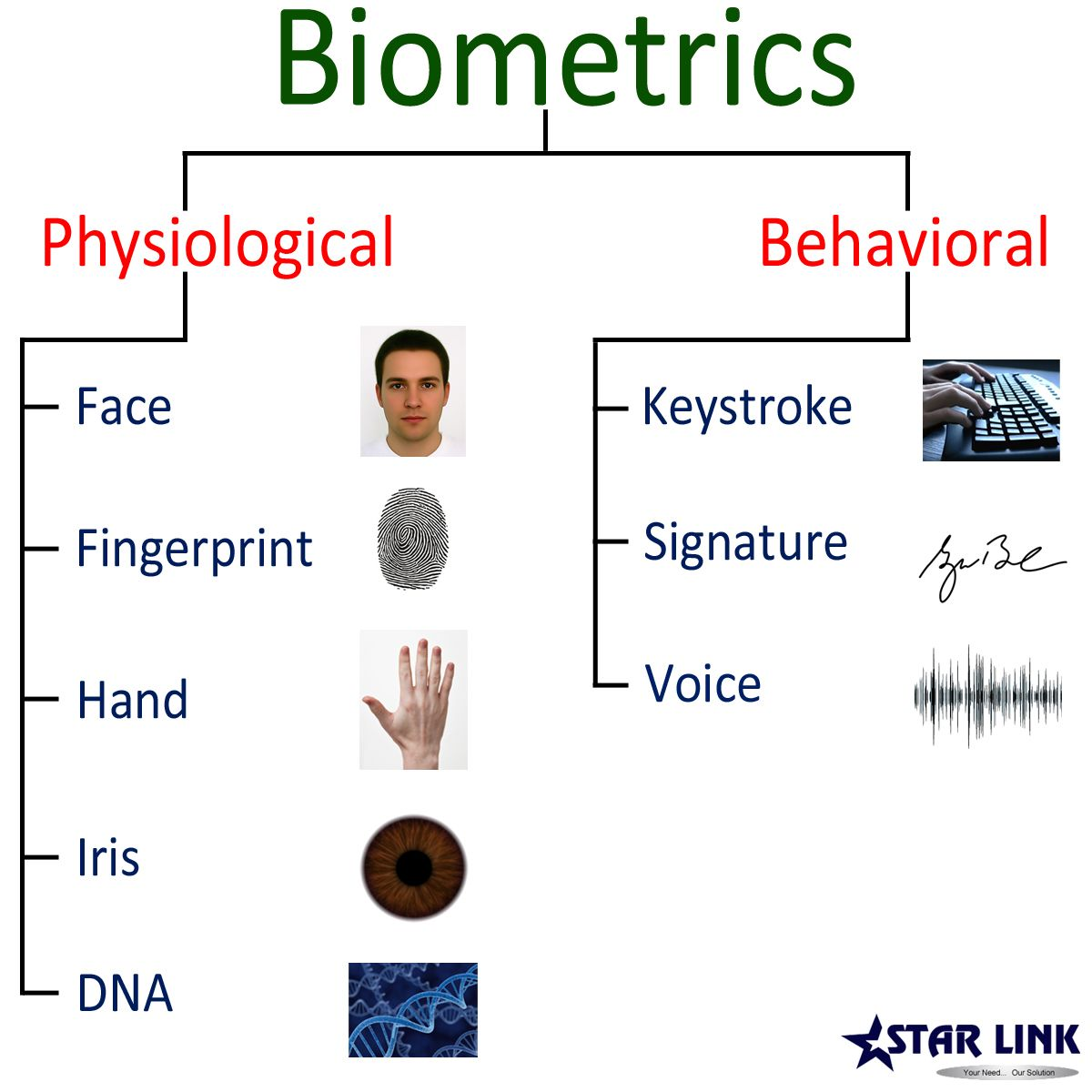 Biometric Security Solutions Different Types
