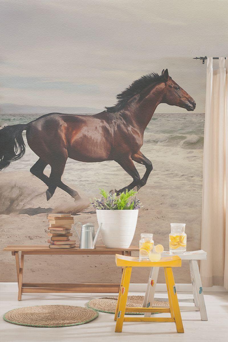 Bay Horse Wallpaper Mural (con imágenes)
