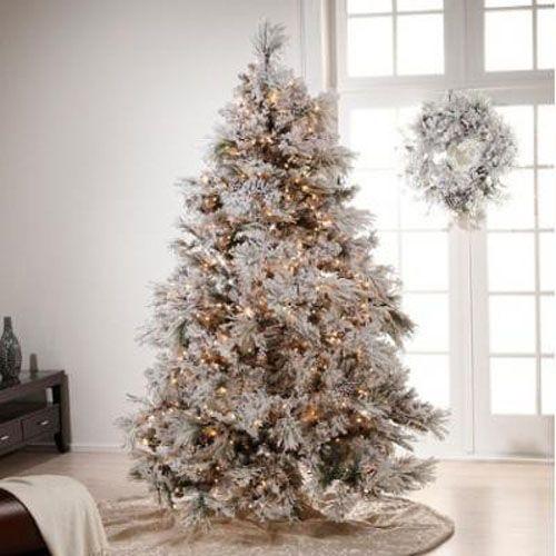 Choosing A Christmas Tree Theme Christmas Tree Holidays And  - Christmas Tree Themes Pictures
