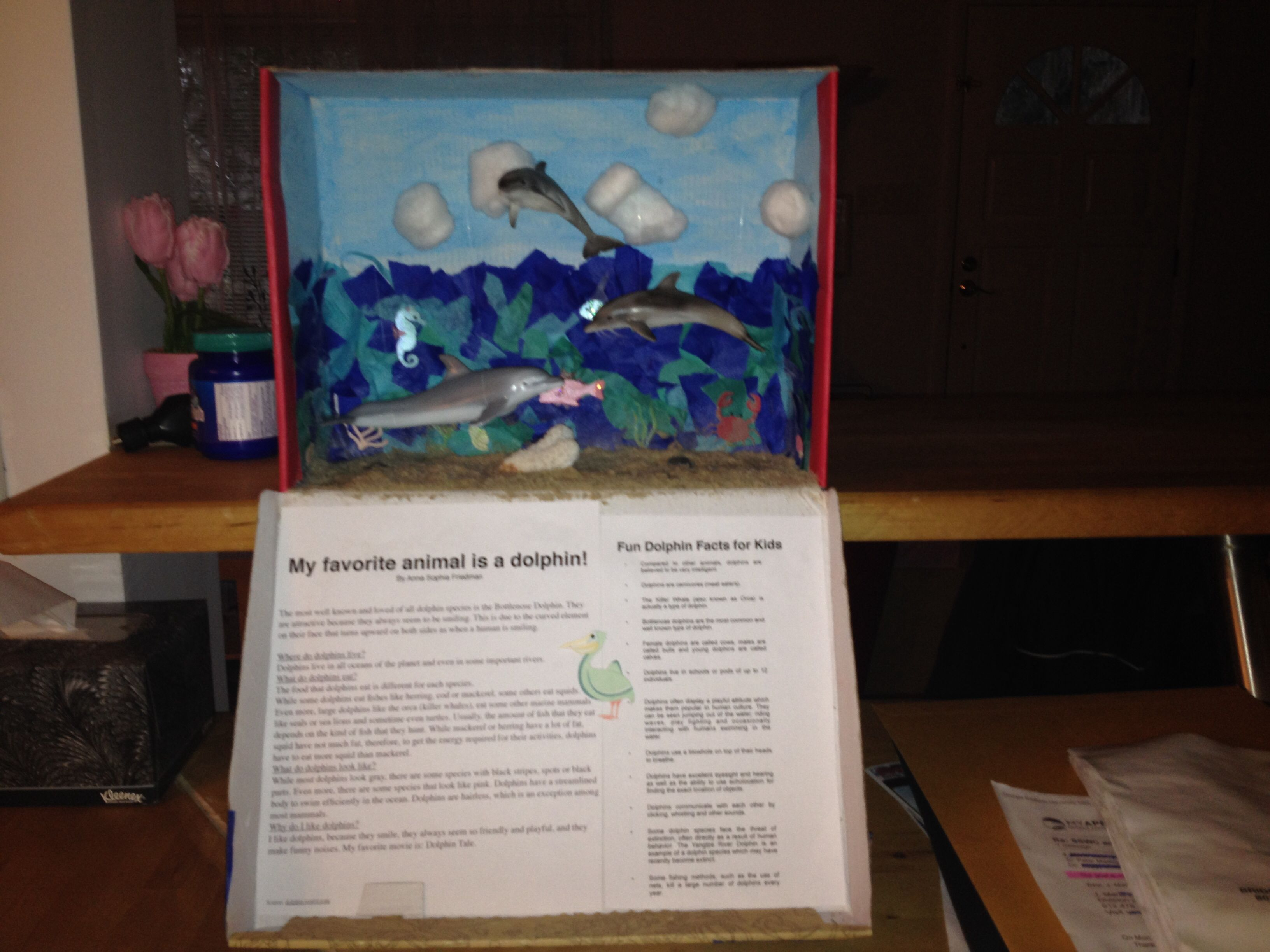 1st Grade School Project Create A Habitat For Your