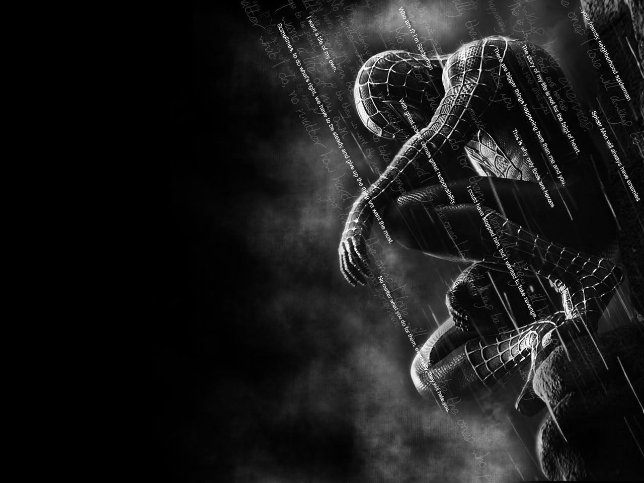 Hd wallpaper spiderman - Hd Spiderman Wallpapers Wallpaper