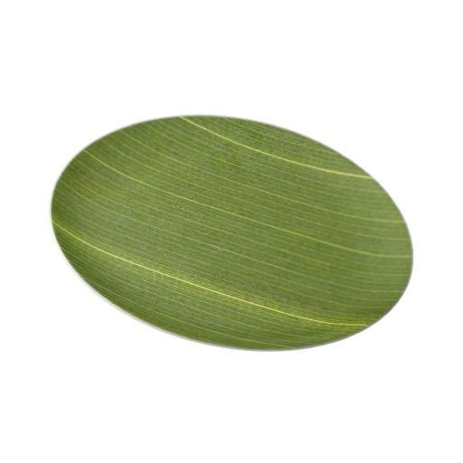Palm Tree Leaf Dinner Plates