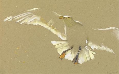 Less is more :)    Jamie  Wyeth:   Gull Ascending