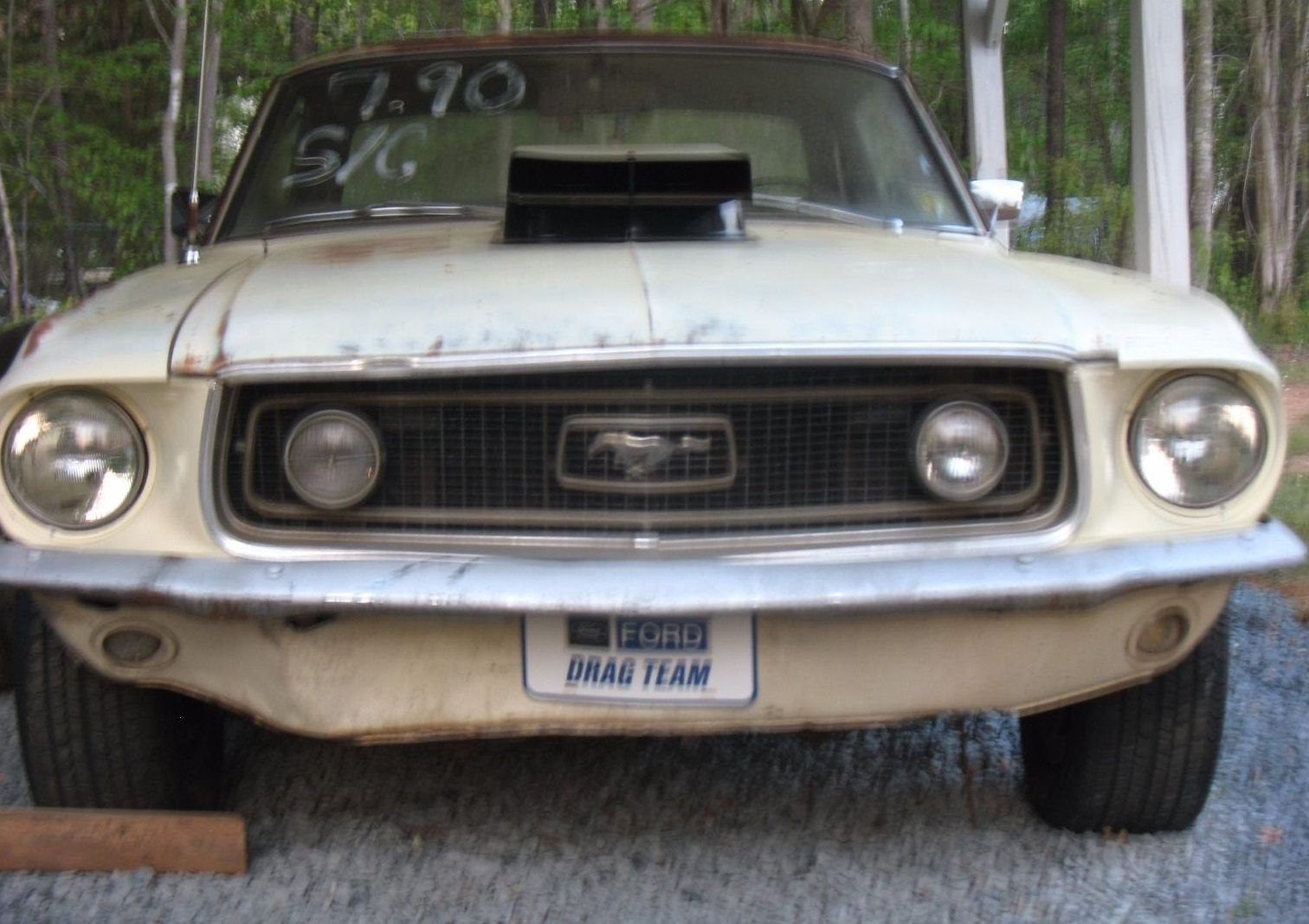 Local Legend: 1968 Ford Mustang - http://barnfinds.com/local-legend-1968-ford-mustang/