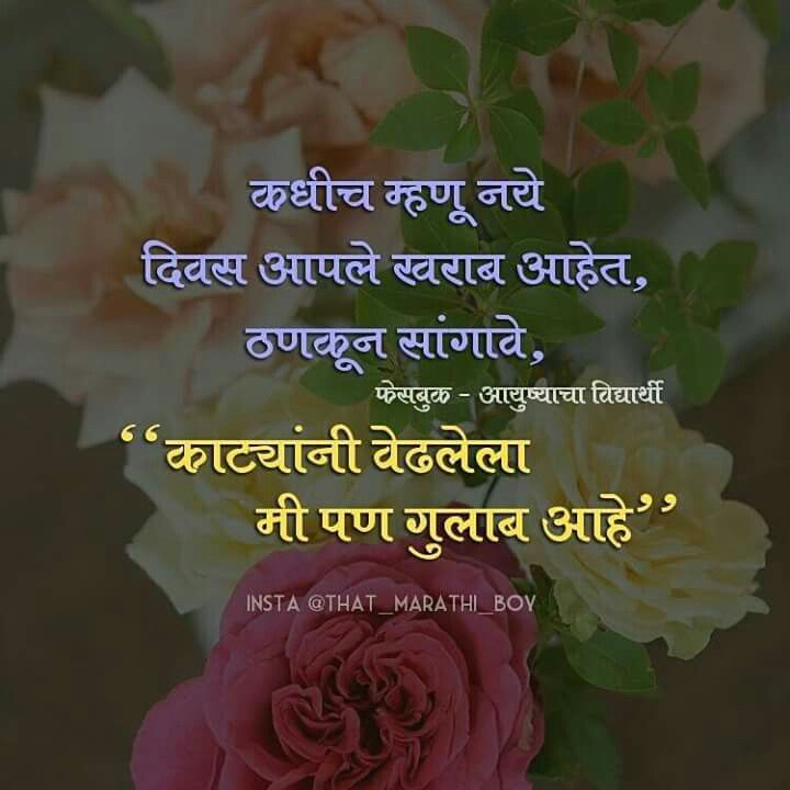 Best Of Rose Flower Quotes In Marathi And Review Marathi Love Quotes Good Morning Flowers Quotes Flower Quotes