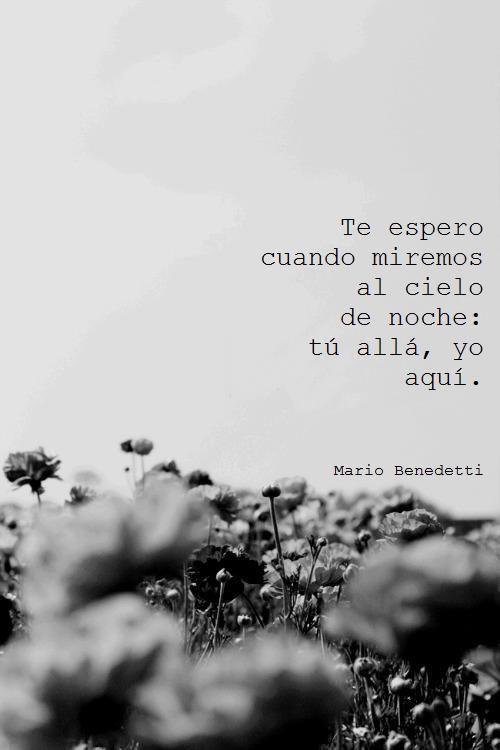 Te Extraño Amigo Benedetti Poemas Mario Benedetti Frases Benedetti