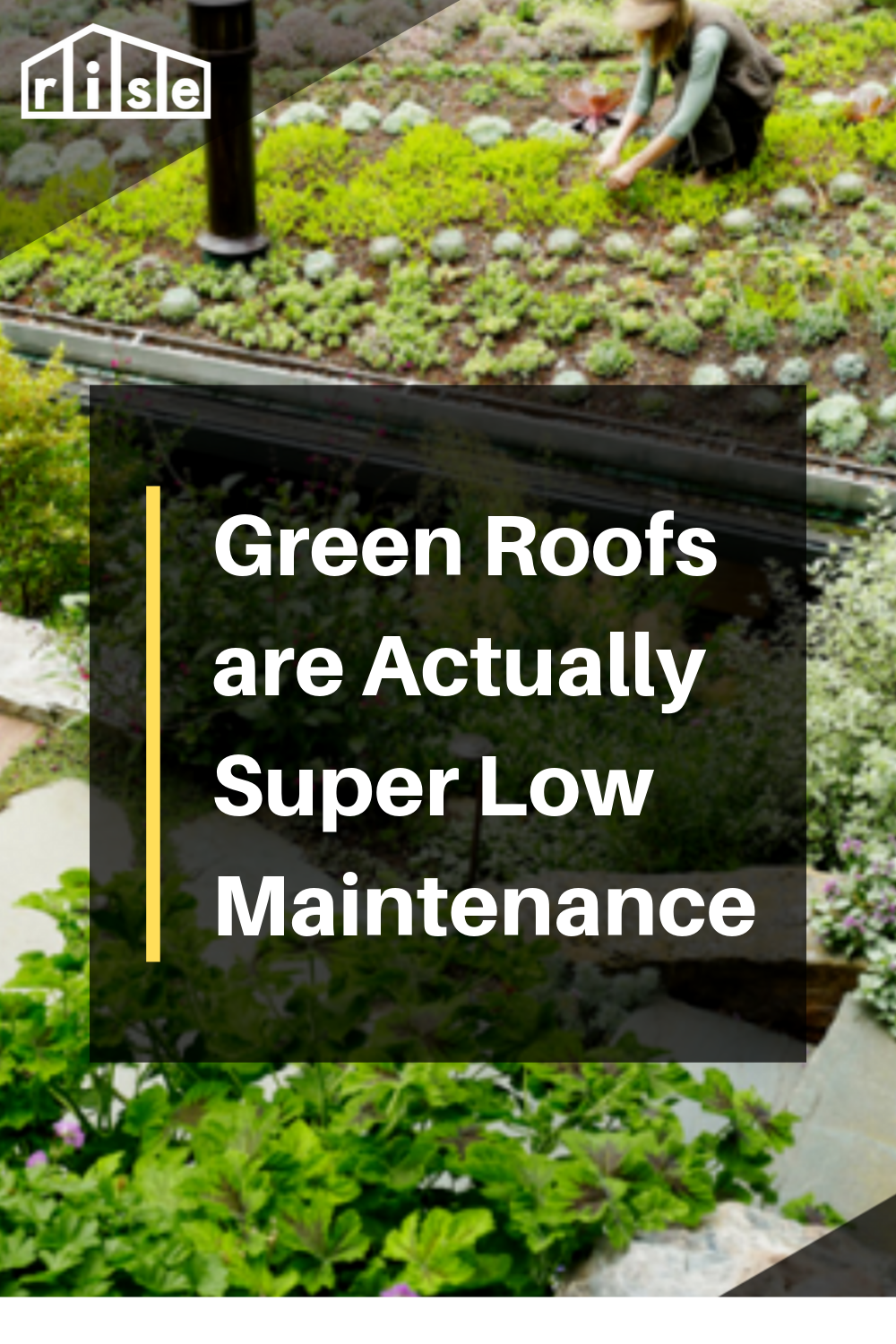How To Maintain Your Green Roof Green Roof Garden Green Roof Green Roof House