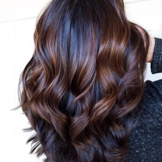 Chestnut Hair Color Ideas That Have Us Ready For Fall Chestnut Hair Color Chestnut Hair Black Hair With Highlights