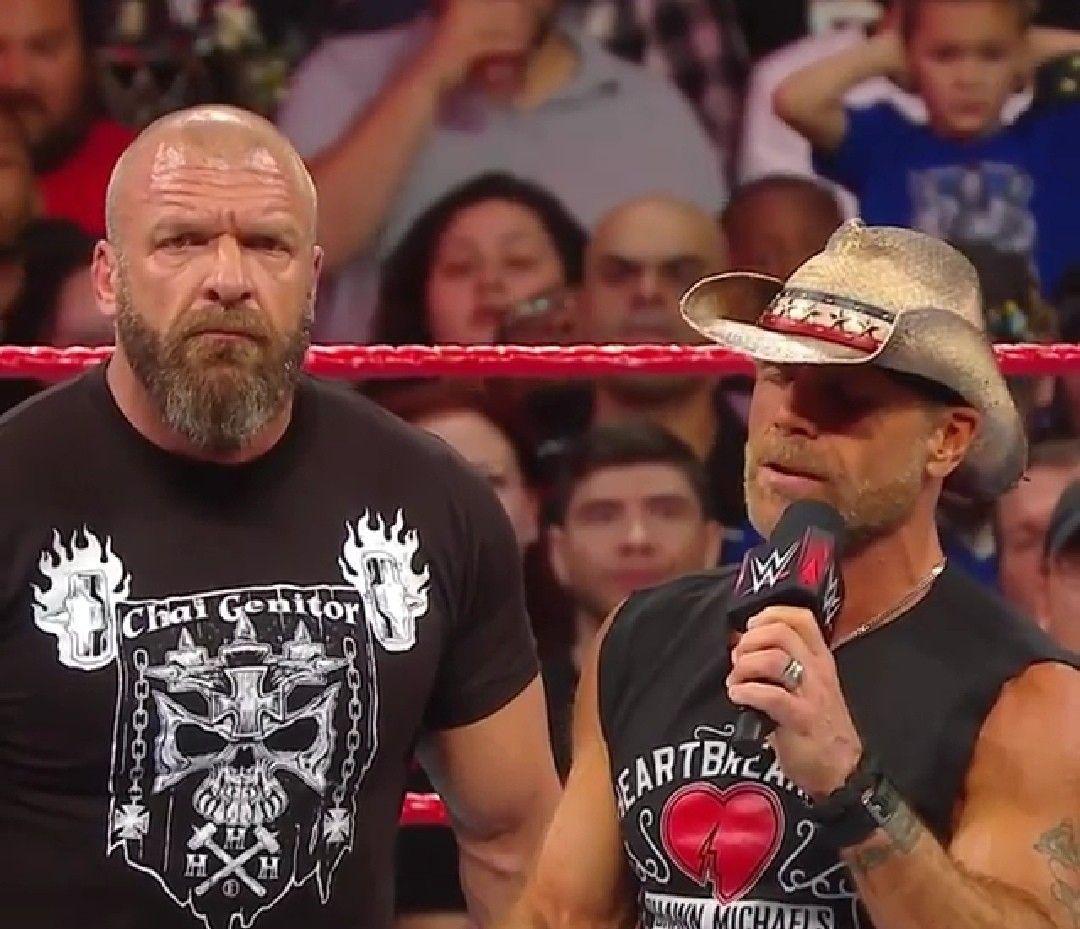 Pin by Dawn Hoig on WWE/NXT | Wwe legends, Stephanie