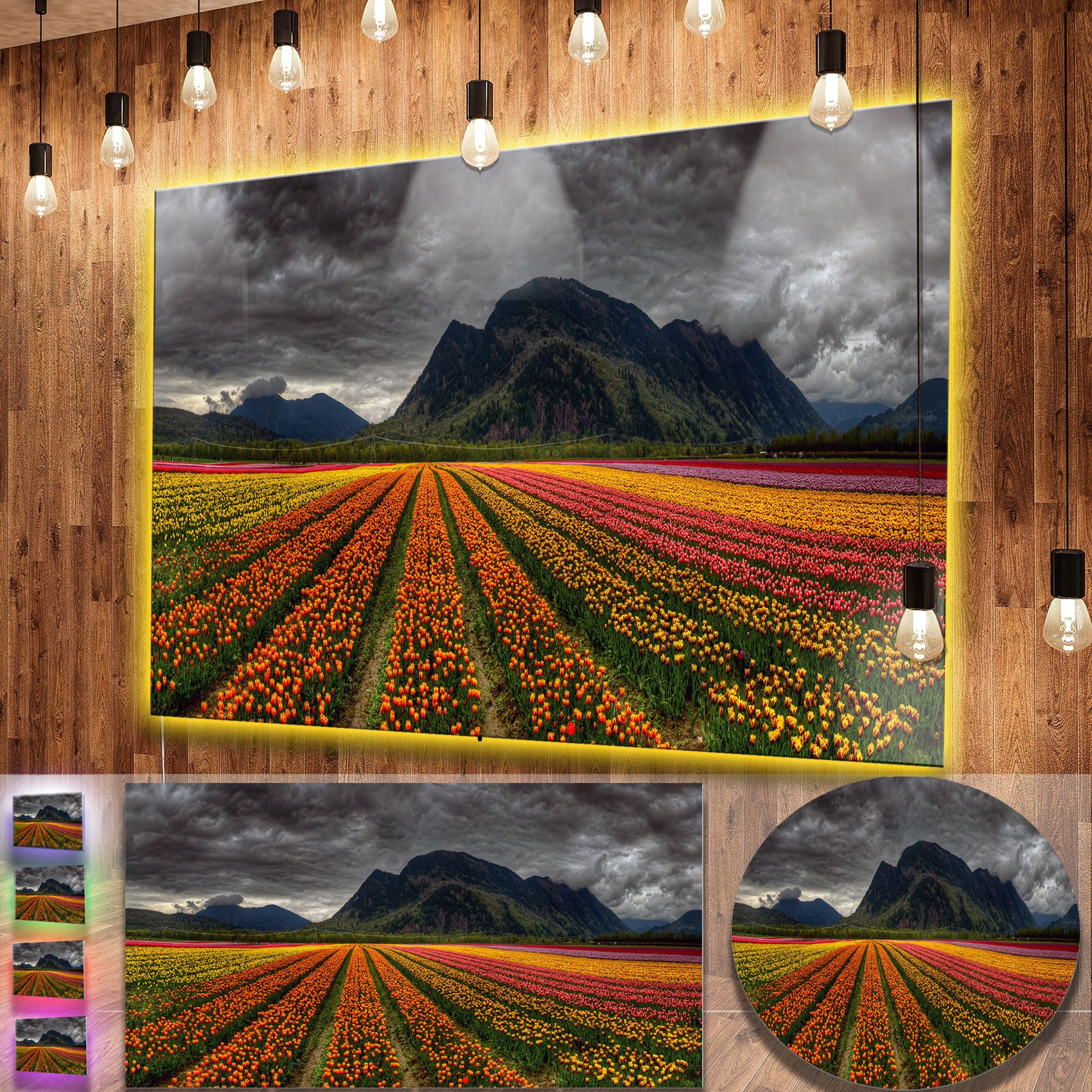 Designart 'Beautiful Colored Tulips Panorama' Landscape Wall Metal Wall Art