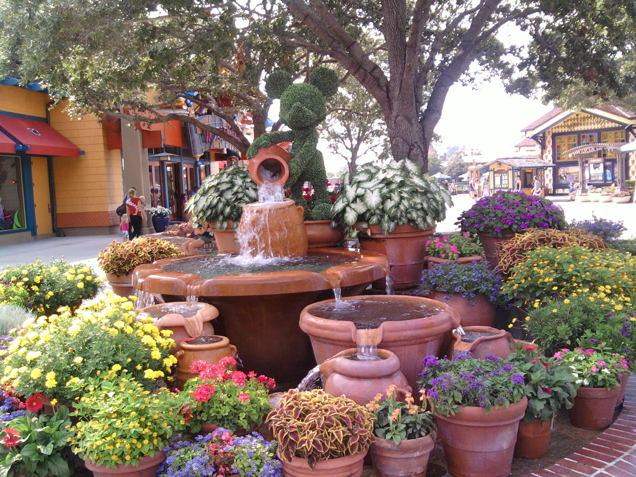 Florida garden ideas florida gardening ideas landscaping ...