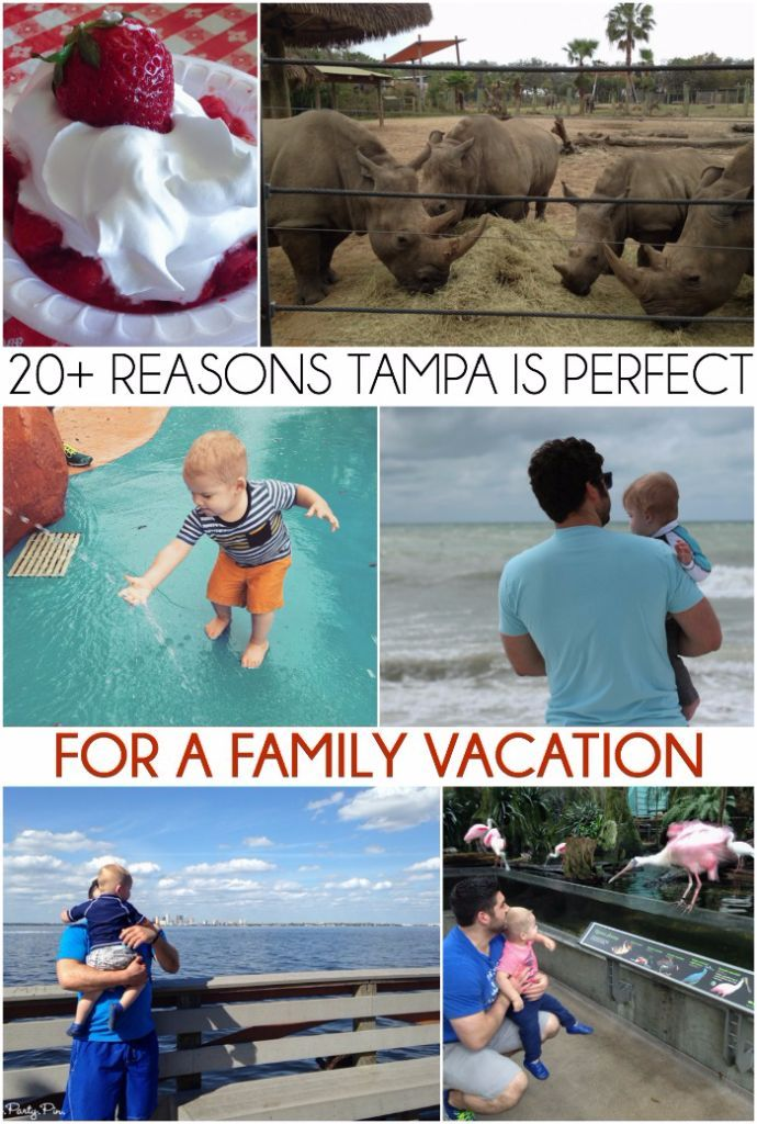 Fun Places For Kids To Eat In Tampa Bay