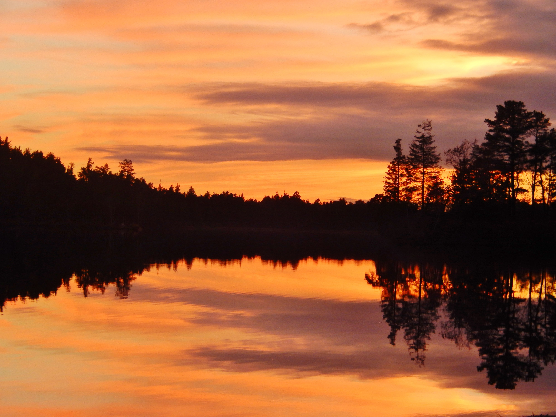 Lake Horicon Lakehurst Nj My Pictures Lake Celestial