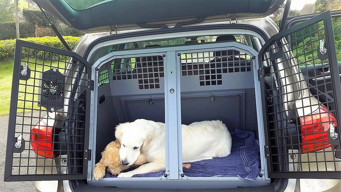 Keep Your Dog Safe While Traveling With A Transk9 Do Box Volkswagen Tiguan Vwtiguaninterior Dog Safe Pet Carriers Crates Volkswagen